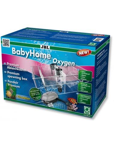 JBL - BabyHome oxygène - Pondoir Premium avec pompe à air