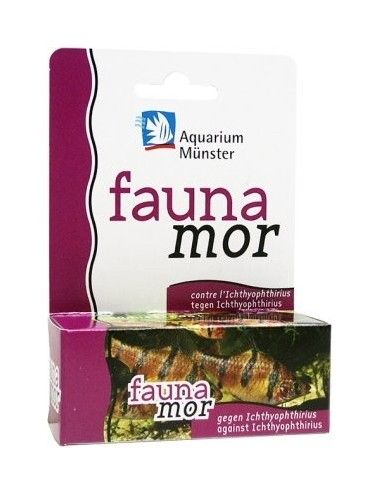 Aquarium Munster - Faunamor...