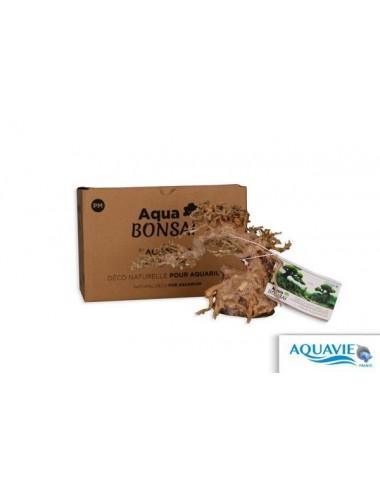 AQUAVIE - Aqua Bonsaï pour aquarium - taille M