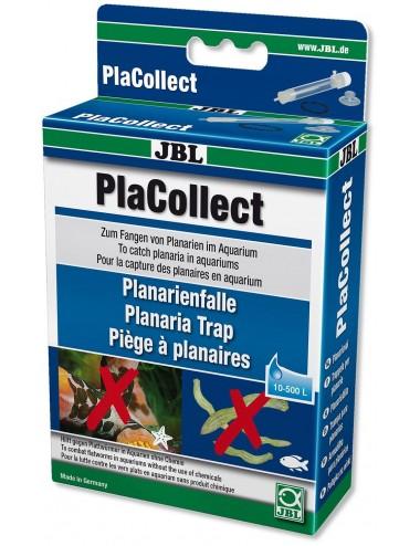 JBL - PlaCollect - Piège à planaires