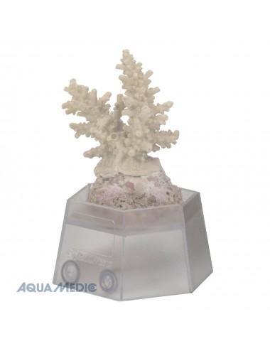 AQUA-MEDIC - Coral holder - Support de bouture de coraux
