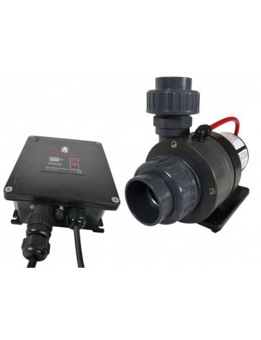 ROYAL EXCLUSIV - Red Dragon® 3 Speedy FLOW 100 Watt / 12,0m³