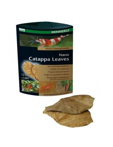 DENNERLE - Catappa Leaves...