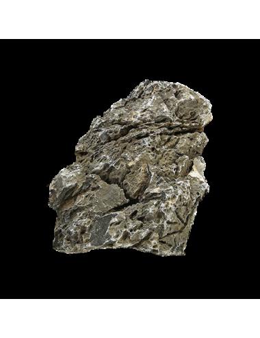 AQUADECO - Seyriu Stone - Taille S - 0.8 - 1.2 kg