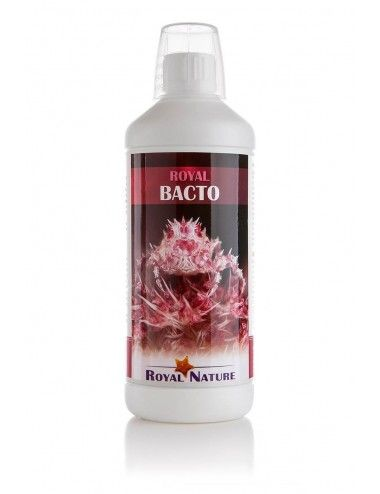 ROYAL NATURE - Bacto - 1000ml - Bactéries pour le démarrage ou l'entretien