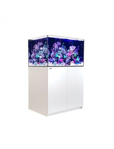 RED SEA - Reefer XL 300 -...