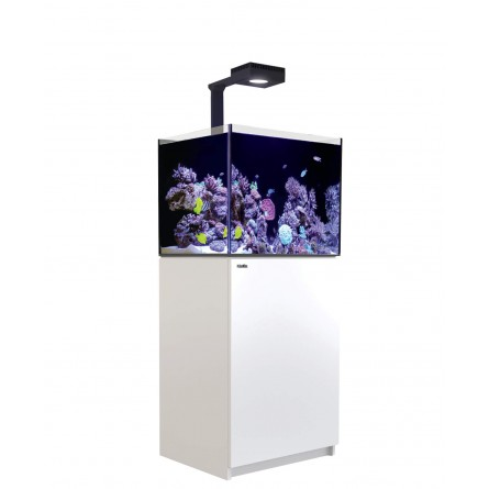 RED SEA - Reefer Deluxe 170 - Blanc - (1 ReefLED 90 et 1 potence)