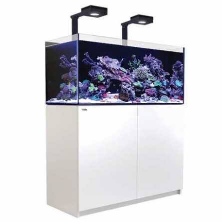 RED SEA - Reefer Deluxe 350 - Blanc - (2 ReefLED 90 et 2 potences)