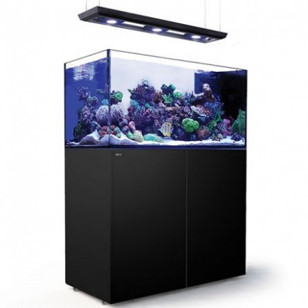 RED SEA - Reefer Peninsula Deluxe - P500 - Noir - (3 ReefLED , rampe suspendue)