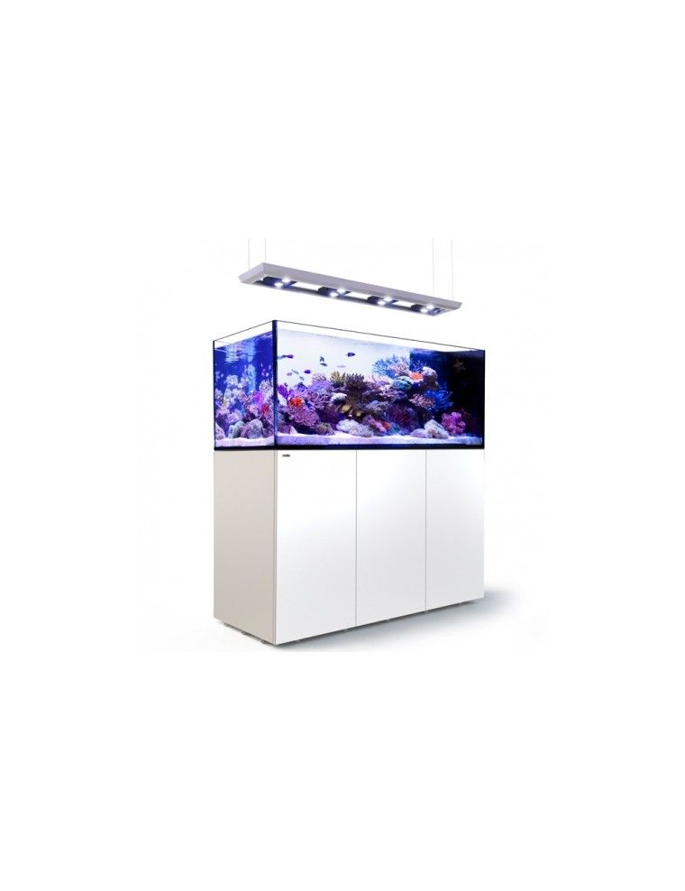 RED SEA - Reefer Peninsula Deluxe - P650 - Blanc - (4 ReefLED, rampe suspendue)