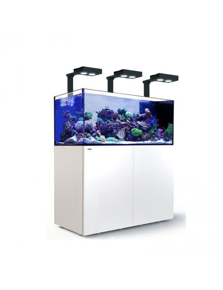 RED SEA - Reefer Peninsula Deluxe - P650 - Blanc - (3 ReefLED 160S et 3 potences)