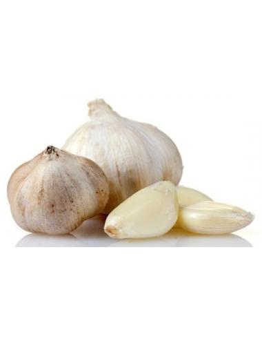 Dr. Bassleer BIOFISH FOOD Garlic - 60gr - L