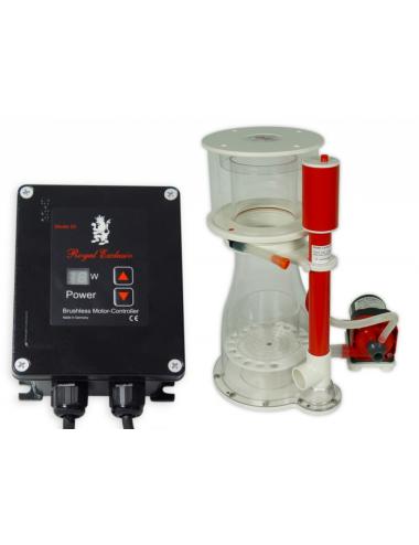 ROYAL EXCLUSIV - Bubble King® Double Cone 200 + RD3 Speedy - Écumeur pour jusqu'à 1000 litres