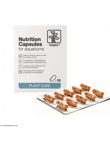TROPICA - Nutrition Capsules - 10 caps - Engrais à libération lente