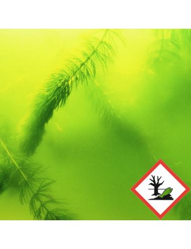 JBL - AlgoPond Green - 250ml - Anti-algues verte