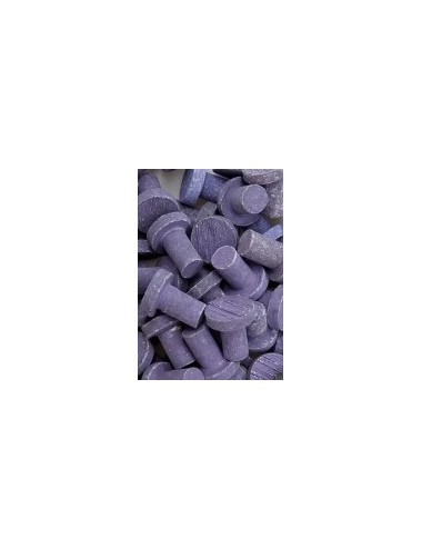 BOUTURAGE - 20 Plugs violet corraline 100% aragonite