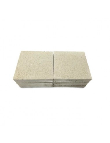 BOUTURAGE - 10 supports pour bouture 5cm 100% aragonite