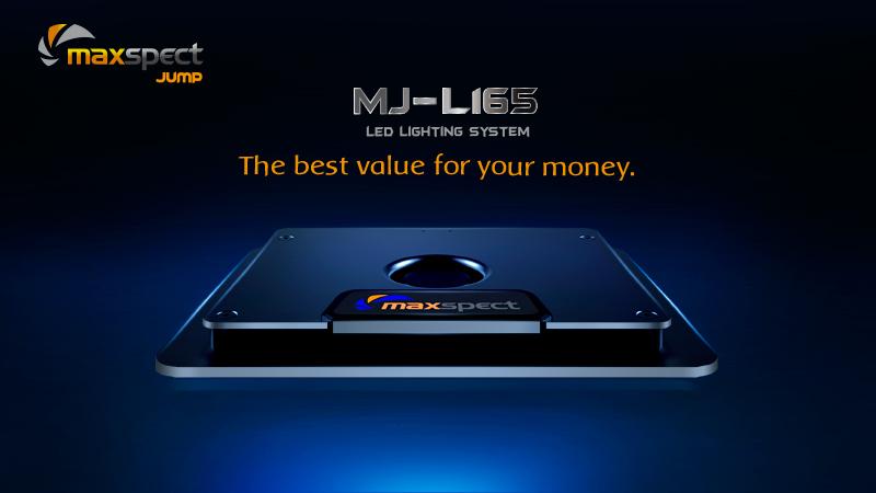 MAXSPECT - Jump LED MJ-L165