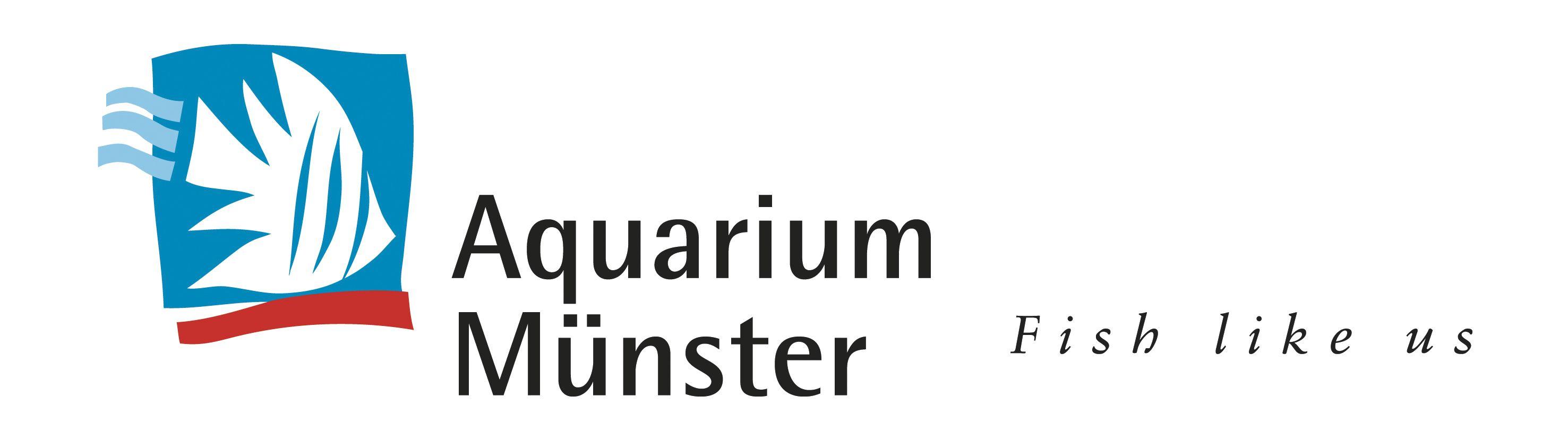 Testez les remèdes pour poisson Aquarium Munster, nourriture, traitement bactérien et conditionneur d'eau sur Zoanthus.fr