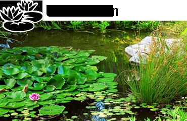 Univers bassin - Des milliers de produits disponibles pour votre bassin de jardin.