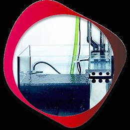 achat / vente matériel pour aquarium et bassin pas cher