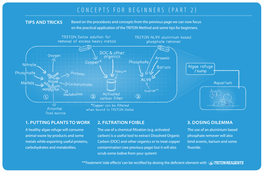 concepts-for-beginners2.png