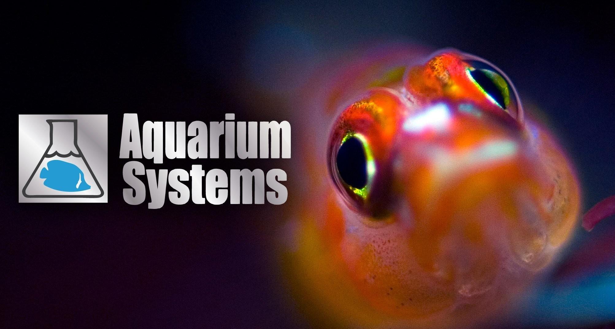 Aquarium System