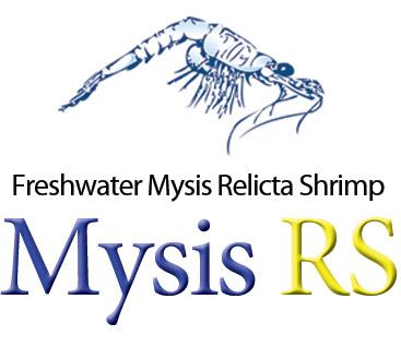 Mysis RS